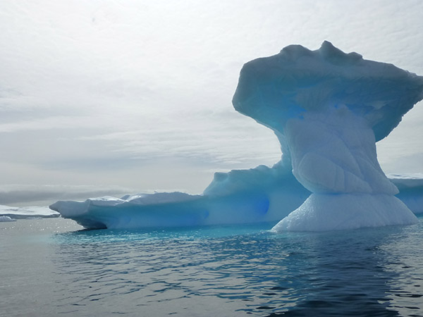 07. iceberg